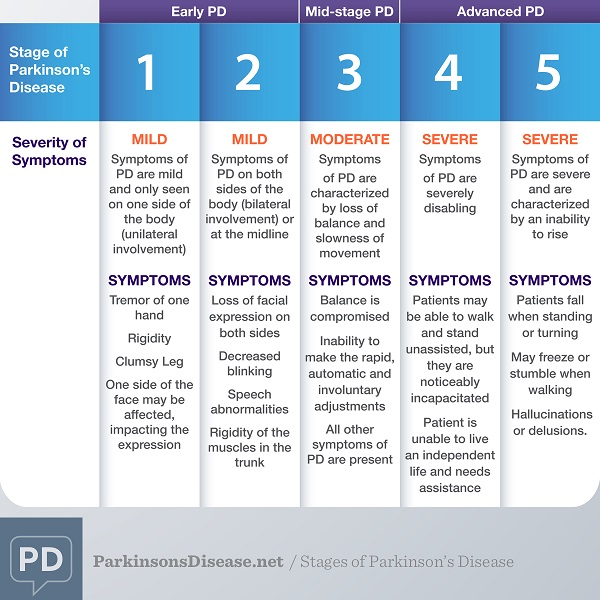 Stages of Parkinsonse Disease